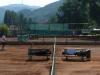tenis0806-0001